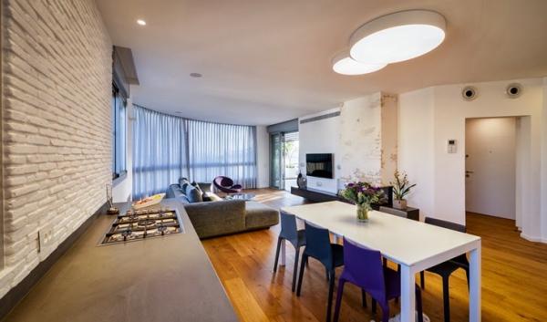penthouse apartment (11)