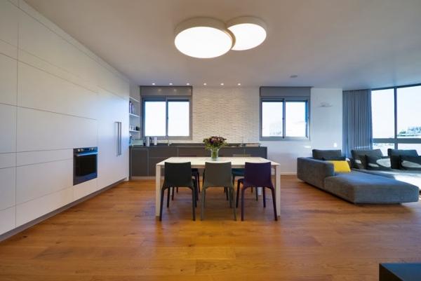 penthouse apartment (13)