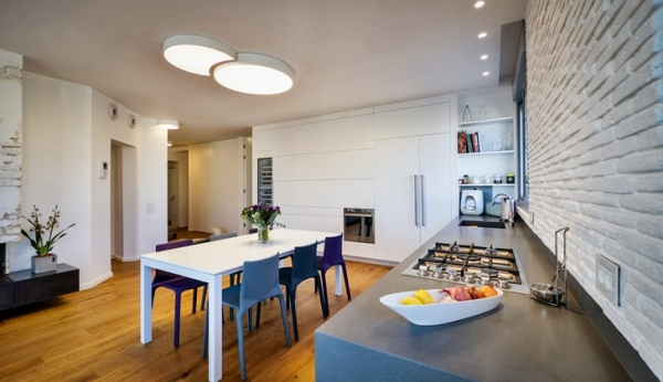 penthouse apartment (15)