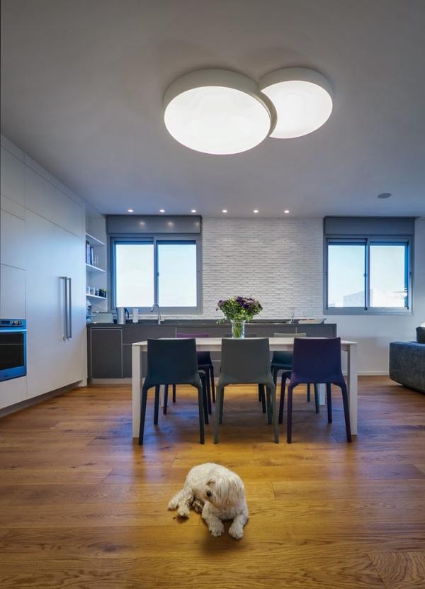 penthouse apartment (16)