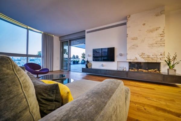 penthouse apartment (4)