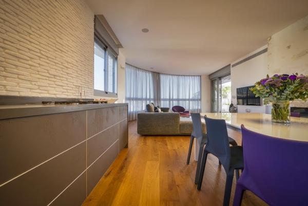 penthouse apartment (9)