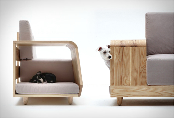 sofa-both-for-humans-and-dogs-1