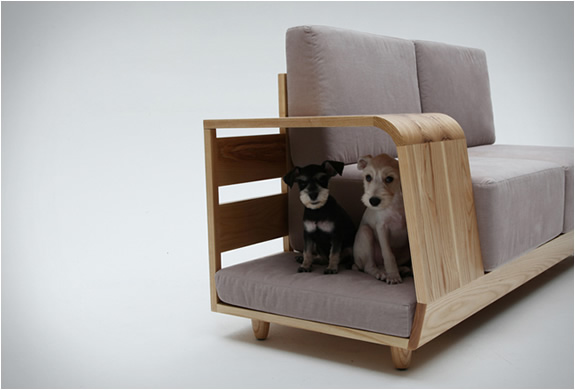 sofa-both-for-humans-and-dogs-2