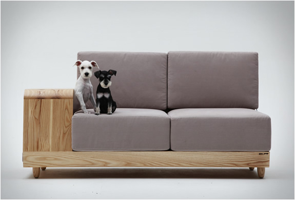 sofa-both-for-humans-and-dogs-3
