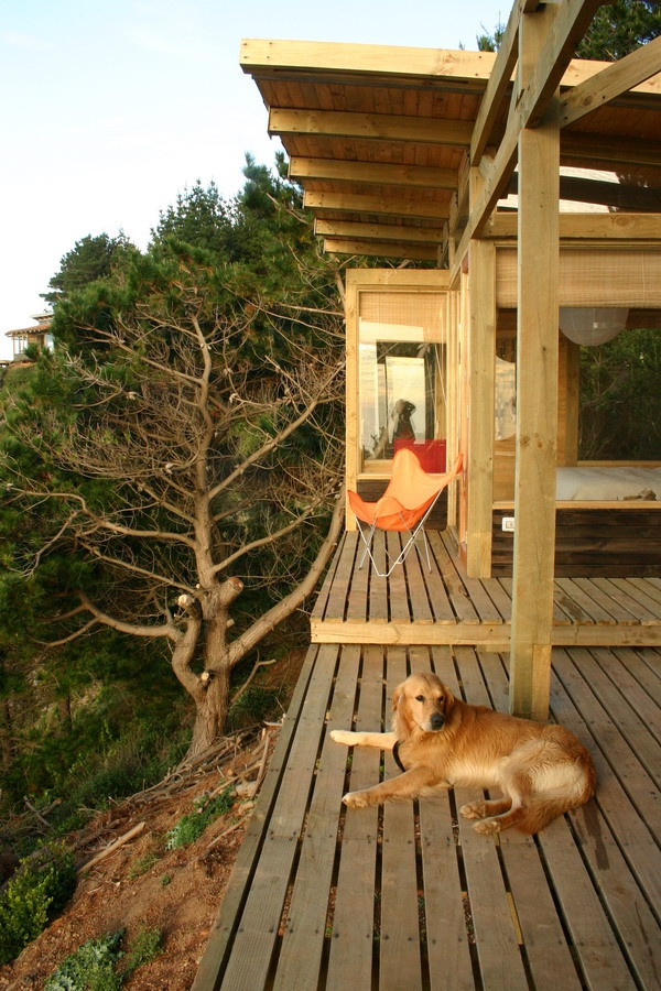 stunning-wood-cabin-with-a-view-to-die-for-3