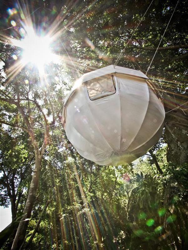 the-amazing-cocoon-tree-tent-4