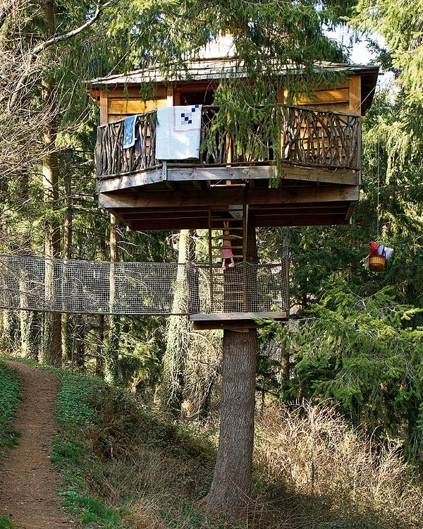 the-best-tree-house-1