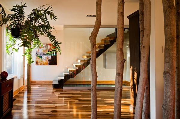 modern residence (9).jpg
