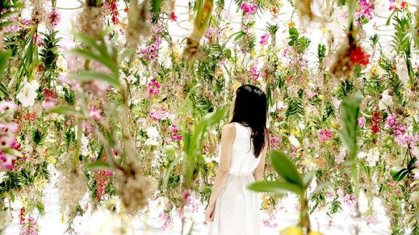 suspended garden by TeamLab (2).jpg