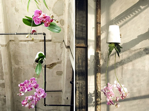 The upside down plants design that will change how you view them forever (1)