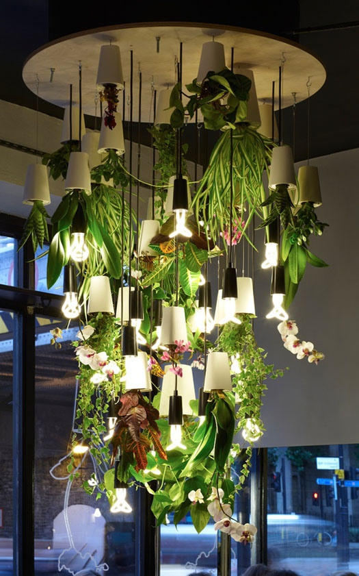 The upside down plants design that will change how you view them forever (14)