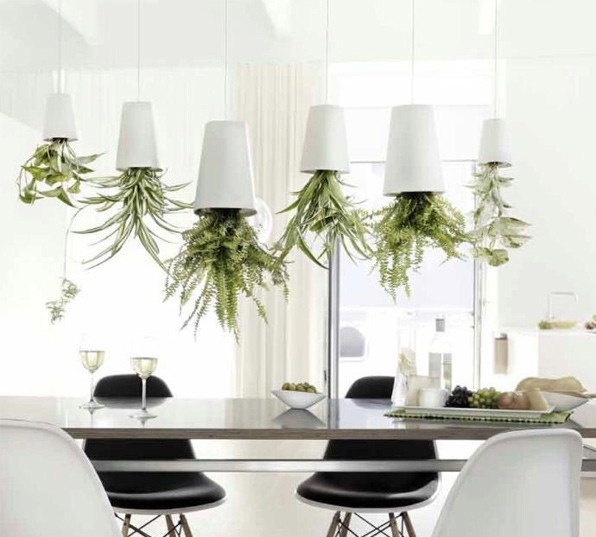The upside down plants design that will change how you view them forever (9)