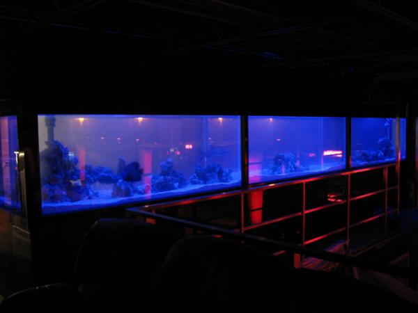 top-class-aquariums-1