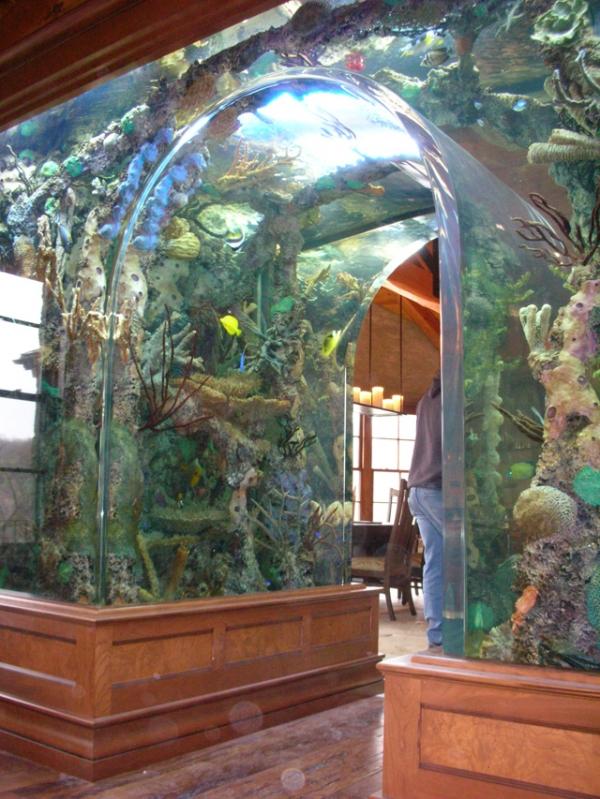 top-class-aquariums-10
