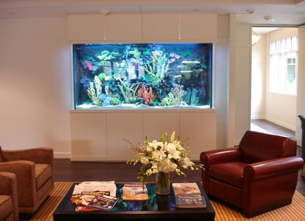 top-class-aquariums-11
