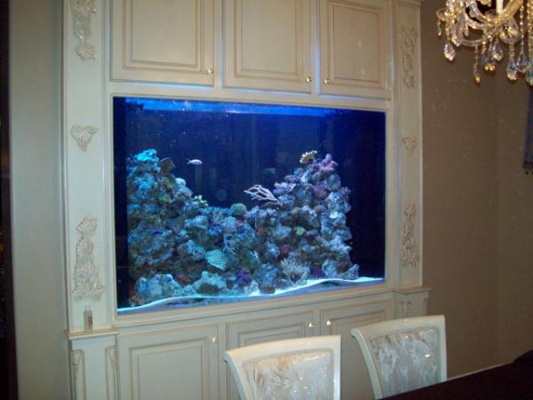 top-class-aquariums-12