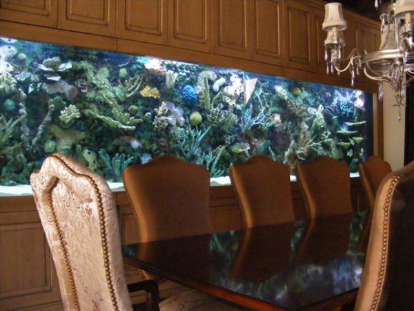 top-class-aquariums-13
