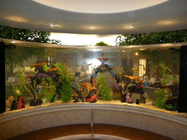 Man Cave Show Tank : Top class aquariums by acrylic adorable home