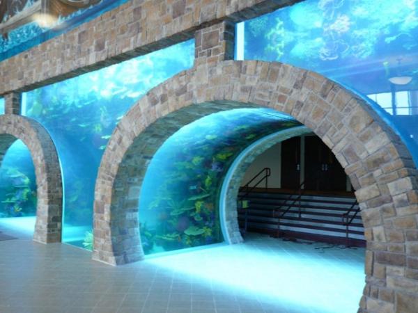top-class-aquariums-15