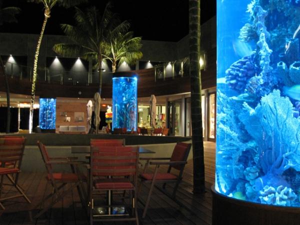 top-class-aquariums-2