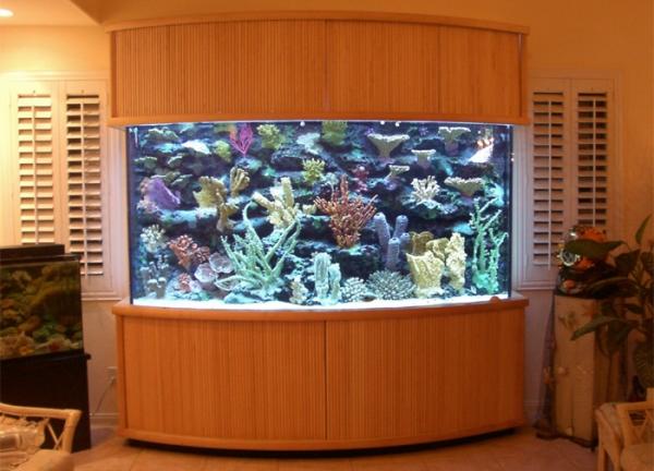 top-class-aquariums-4