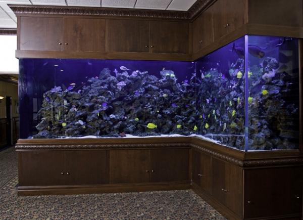 top-class-aquariums-6