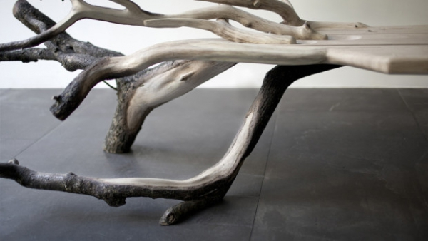 tree-bench-is-a-natural-design-marvel-3
