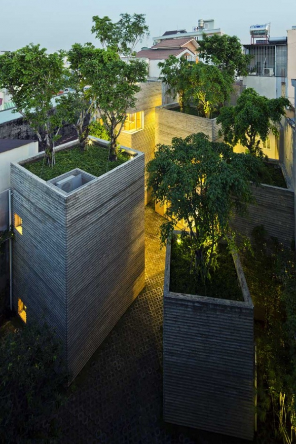 green design house for trees  (13)