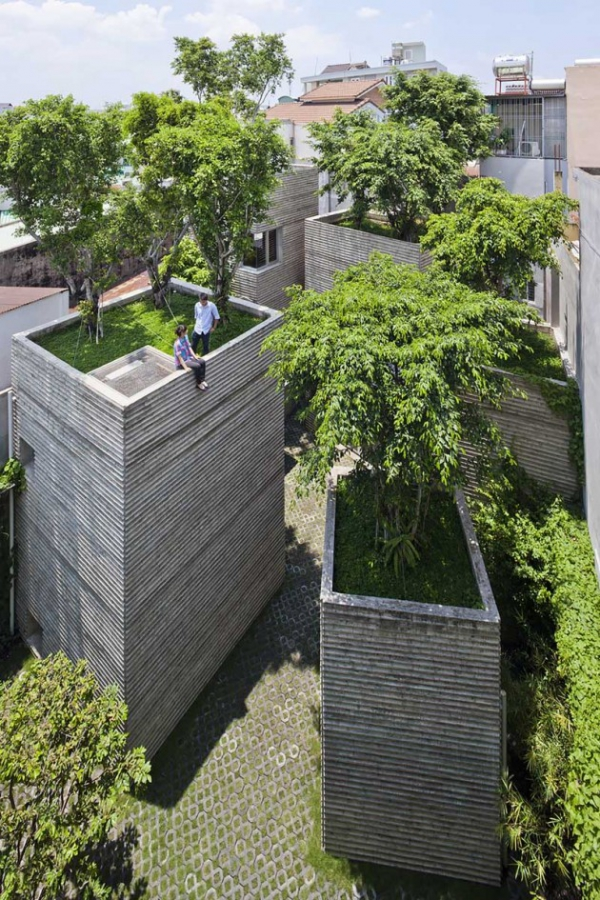 green design house for trees  (3)