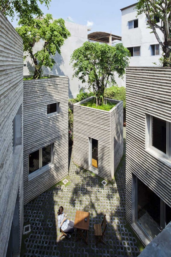 green design house for trees  (4)