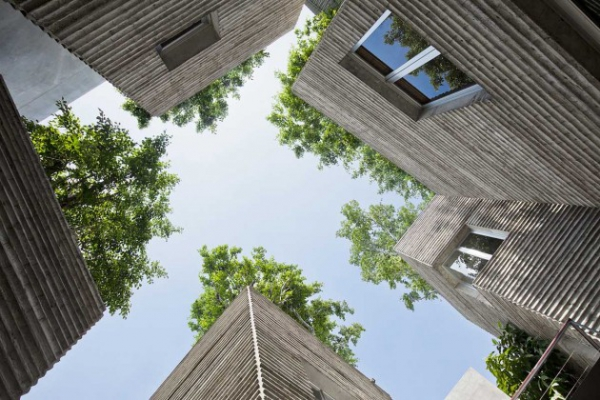 green design house for trees  (5)