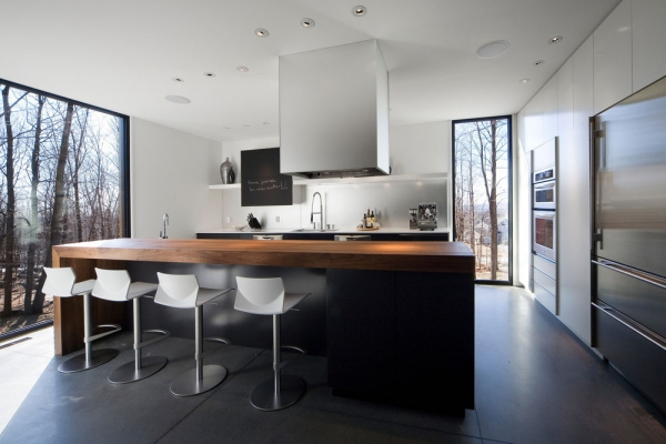 Contemporary forest home in Montreal (3)
