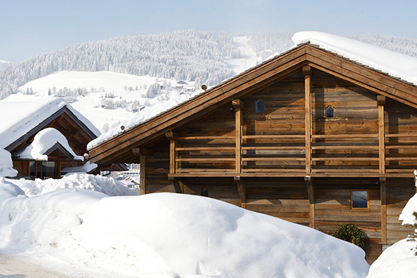 Mountin Chalet: In the French Alps