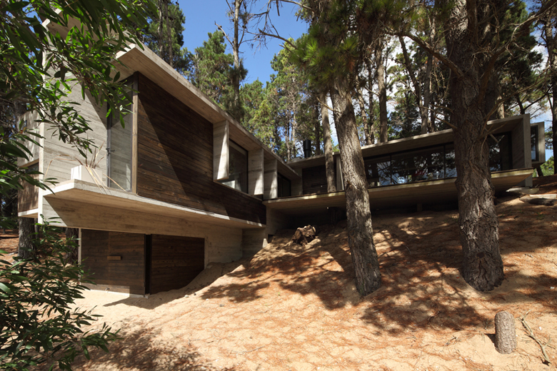 Forest house in Argentina (1)