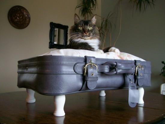 A suitcase for decoration (3)
