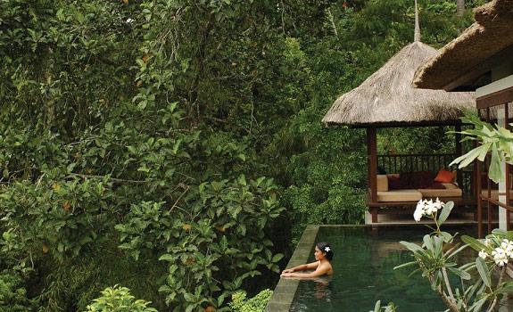 A Tropical Heaven