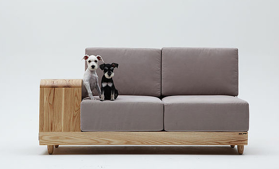 Sofa Both for Humans and Dogs