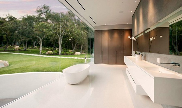 Transparent bathroom designs