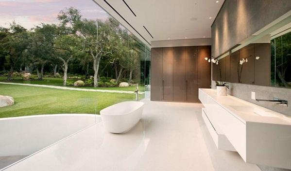 Transparent bathroom designs
