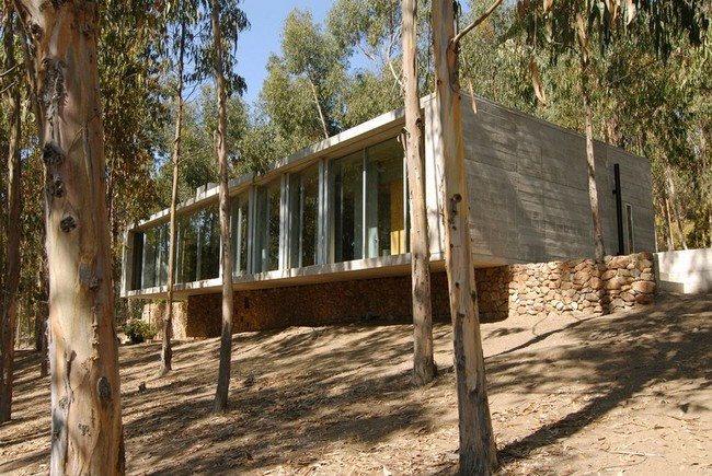 Chilean forest house