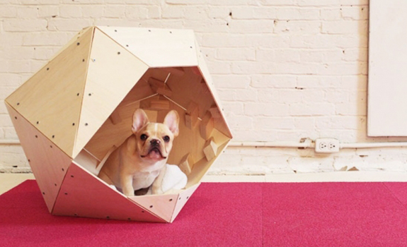 Contemporary Geometric Doghouse on red carpet