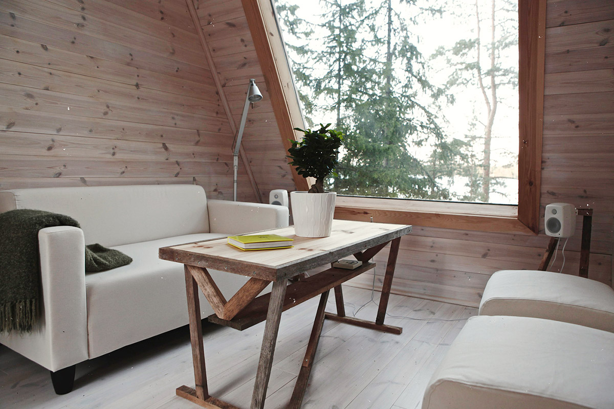 Cabin-design-living-room