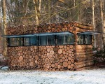 Creatively crafted tree trunk house