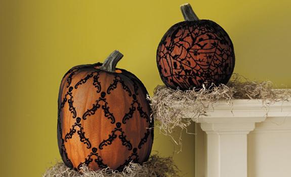Assorted Pumpkin Sleeves