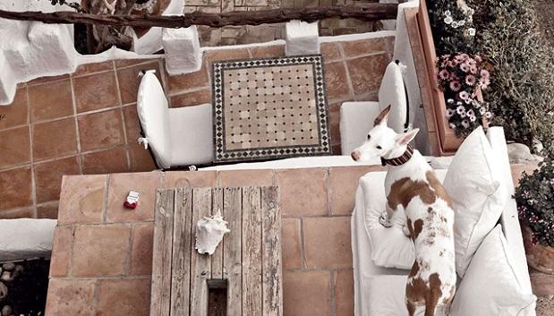 Beautiful boutique hotel in Ibiza