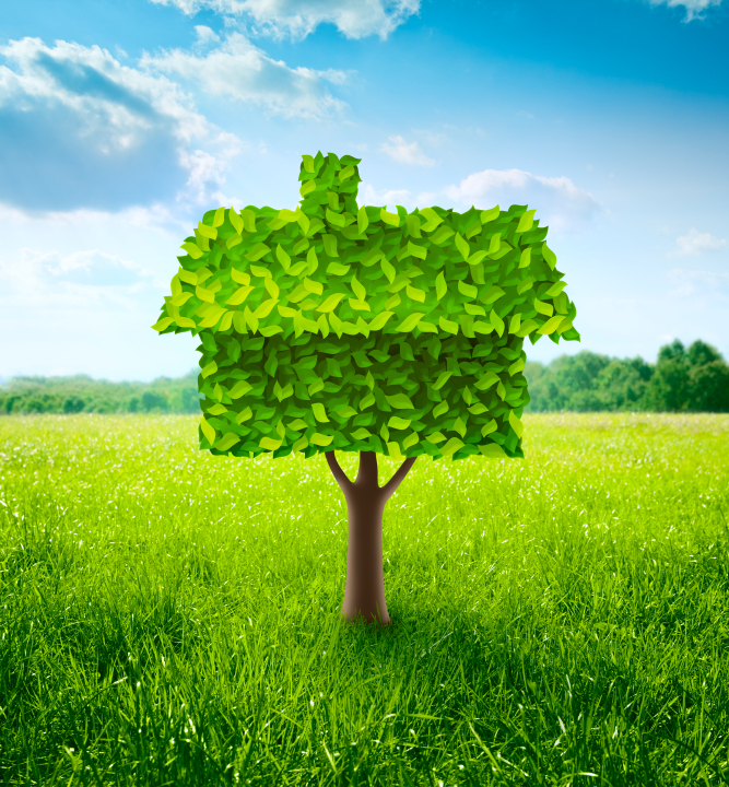 How to plan an eco-friendly home remodel