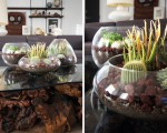 Simple and beautiful DIY terrarium