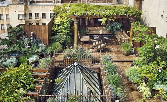Rooftop garden oasis