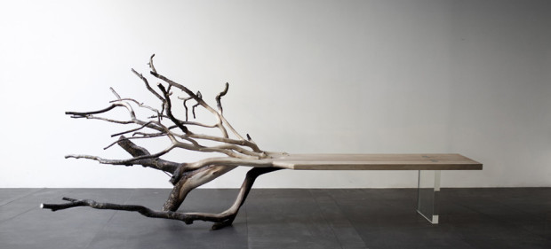 Tree bench is a natural design marvel